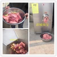 瑞宝JR-160D 冻肉绞肉机 牛羊肉绞肉机 肉制品厂加工设备 火腿肠绞肉机