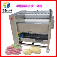 腾昇TS-M300爆款果蔬去皮加工设备 土豆去皮机 地瓜清洗去皮机脱皮机 去皮机代替了人工