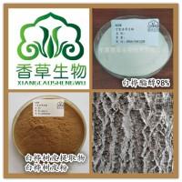 白桦树皮粉130目白桦树皮浓缩液出厂价桦树皮流浸膏现货供应