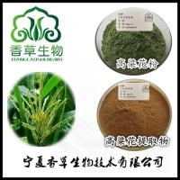高粱花粉出厂价 高粱花提取物14:1  高粱花提取液价格