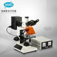 显微镜厂家 研究型荧光显微镜 专业检测DNA基因 荧光物质