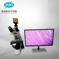 厂家直销无限远拍储存测量显微镜 研究型大倍数生物显微镜