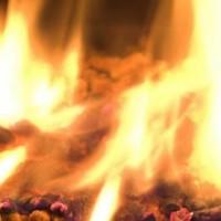 湖州生物质颗粒,浙江生物质炭,浙江生物质颗粒厂家