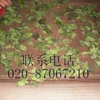 微波茶叶杀青干燥机