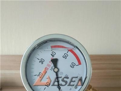 新疆 YN100耐震压力表60MPA  各种压力表规格齐全