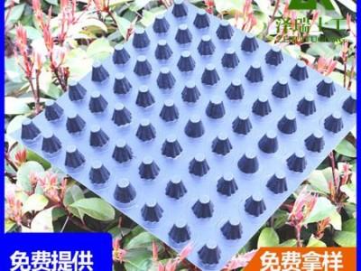 马鞍山25高塑料透水板地下室疏水板
